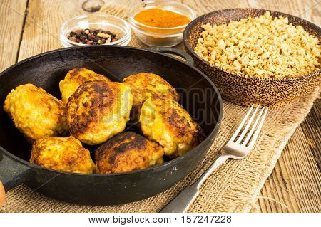 Delicious fried Minced Soy Cutlets Studio Photo