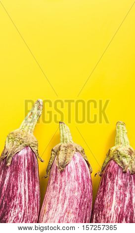 Aubergines, On Vivid Yellow Background With Copy-space