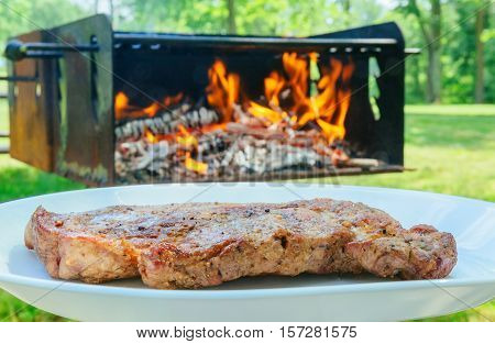 Delicious beef steaks on wood barbecue fire wood