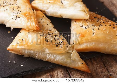 Freshly Baked Filo Pastry With Chicken, Spinach And Cheese Close-up. Horizontal