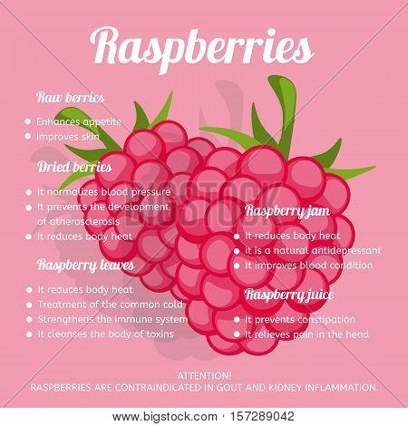 Raspberries benefits. Infographics. Information and benefits berries