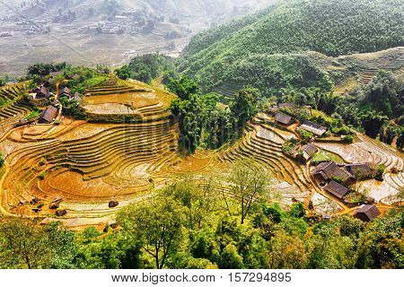 Top View Of Village Houses And Rice Terraces, Vietnam
