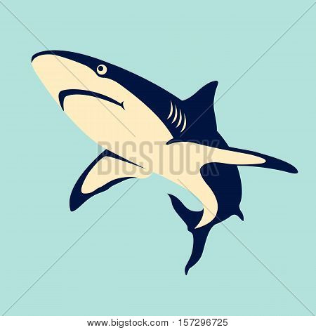 Shark color vector illustration style Flat profile
