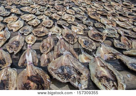 Traditional salted fish drying on racks in Semporna,Sabah,Borneo.Sea Gypsy sell their surplus catch as dried and salted fish through nearest town in Semporna,Sabah.