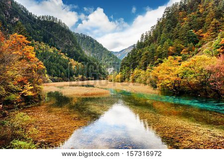 Crystal Clear Water Of River Among Fall Woods In Mountain Gorge