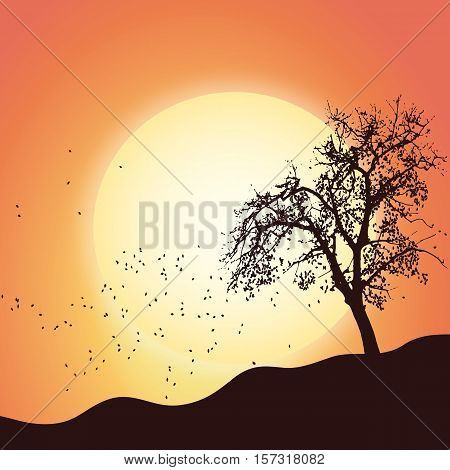 Autumn tree leaf landscape scenic nature - lanscape sunset nature vector illustration flat stock