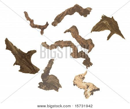Gnarled bogwood and logs of various shades