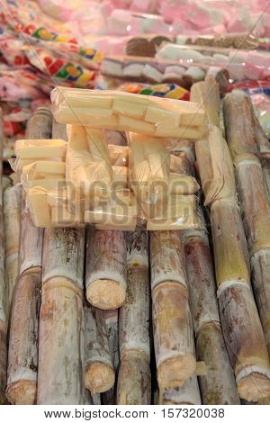 Sugarcane for sale in a market, South America