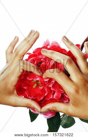 beauty delicate hands with manicure holding flower lily close up isolated on white macro
