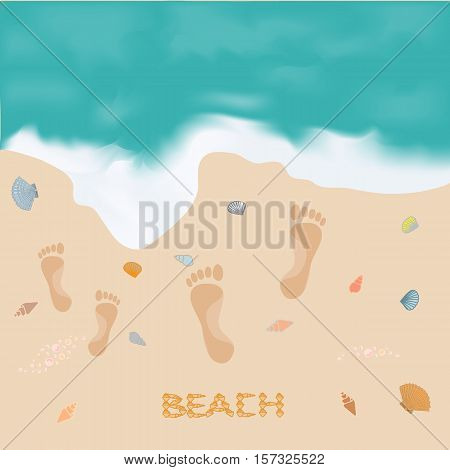 Picture With The Sea, Footprints In The Sand And Inscription Shells