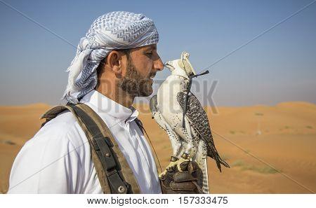 Dubai UAE November 19th 2016: A falconer training a Peregrine Falcon (Falco peregrinus) in a desert