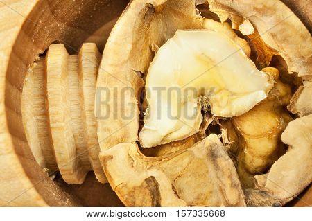 Walnuts and wooden nutcracker. Super foods for human brain. Healthy walnuts. Fresh walnuts. Walnut kernels