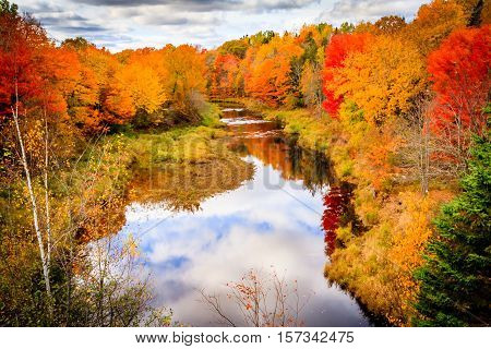 Changing colours in Autumn, Saint Antoine, New Brunswick, Canada