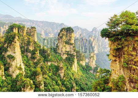 Scenic View Of Amazing Canyon (avatar Mountains)