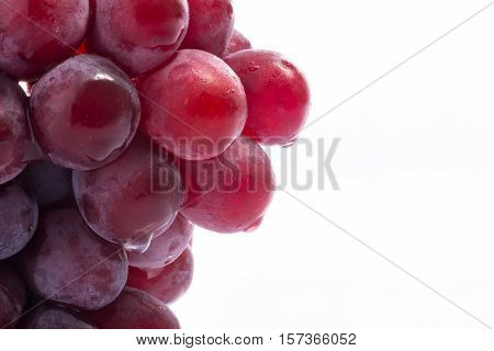 Red Grapes On White Acrylic
