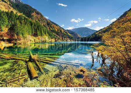 Scenic View Of The Arrow Bamboo Lake With Crystal Clear Water