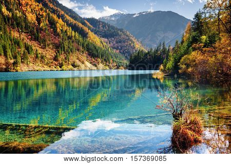 Beautiful View Of The Arrow Bamboo Lake With Azure Water