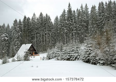 Winter view with forest and small restaurant in ski resort in Demanovska valley Low Tatras Slovakia.
