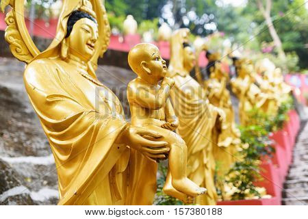 Golden Buddha Statues Along The Stairs Leading To The Ten Thousand Buddhas Monastery In Hong Kong