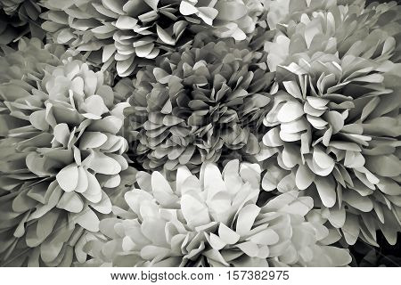 Floral decorations made of paper. Black and white background.