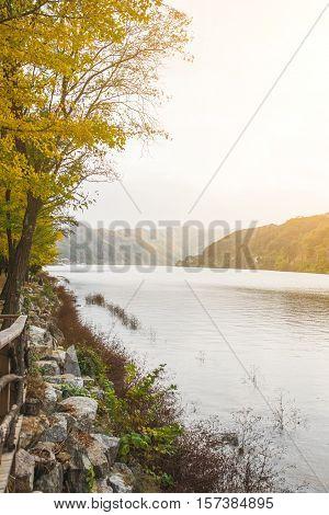 Autumn season outside Nami island South Korea