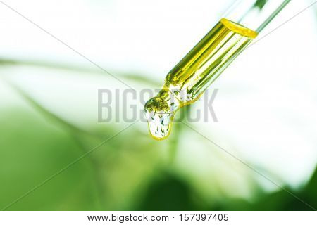 Pipette with essential liquid, closeup