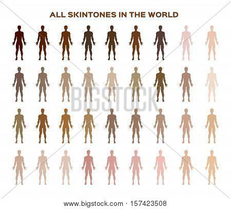 skin color index , infographic vector . dark to light skin