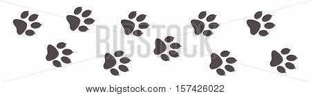 Paw prints, animal tracks on a white isolated background. Steps animal drawn for the design of backdrops.