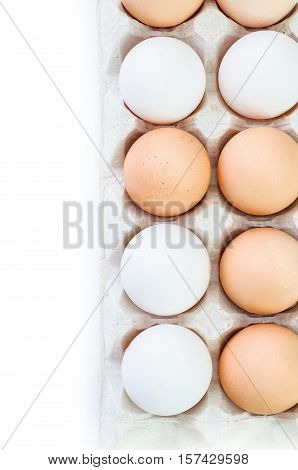 Chicken eggs in egg carton isolated on white background