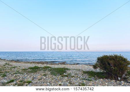 rocks and plants on the coast of Lake Baikal