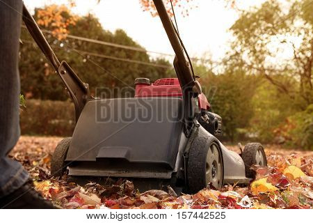 Man collecting old autumn leaves by Lawn Mover