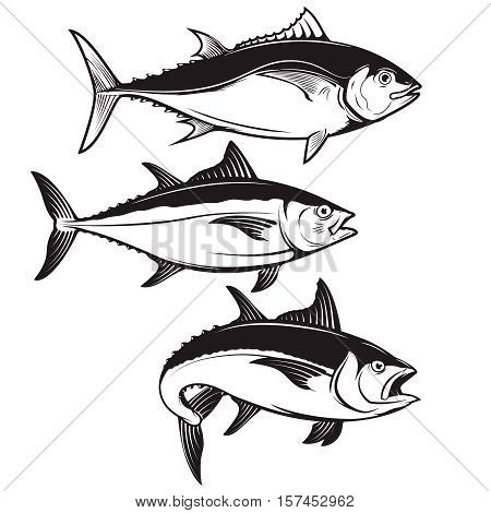 Set of tuna fish icons isolated on white background. Design elements for logo, label, emblem, sign, badge. Vector illustration.