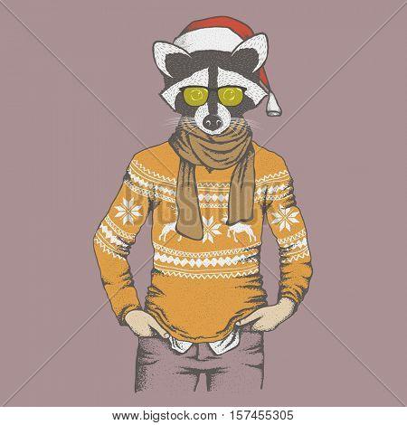 Raccoon vector illustration Christmas costume. Raccoon in human sweatshirt and Santa hat