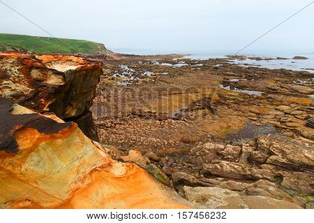 Stones on the ocean coast during an outflow. The stony coast an outflow has bared the stones covered with seaweed.