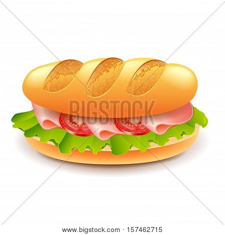 French sandwich from loaf isolated on white vector illustration