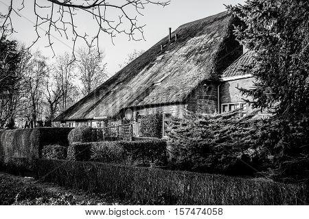 GIETHOORN NETHERLANDS - JANUARY 20 2016: Black-white photo of old cozy house with thatched roof on January 20 2016 in Giethoorn Netherlands.