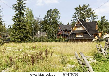 ZAKOPANE POLAND - SEPTEMBER 12 2016: Houses built in the style of mountain cottage can be seen behind the undeveloped meadow. These houses are surrounded by bushes and trees