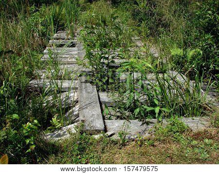 A broken down wood bridge on a walking path across a stream.