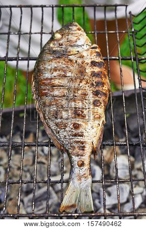 grilled gilthead on fire at backyard at summer time