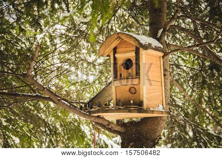 Nesting box hanging on the tree winter