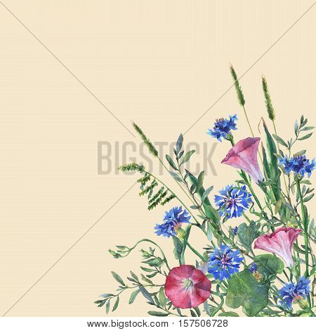 Colorful spring flowers and grass on a meadow. Watercolor hand painting illustration on isolate yellow background.