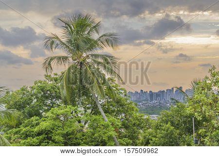 Aerial View Of Olinda And Recife, Pernambuco Brazil