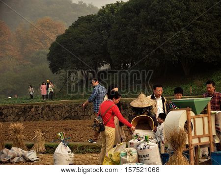 HANGZHOU, CHINA - NOVEMBER 19: Members of the public gather round a rice farmer as she pours rice from the harvest into a sack on November 19, 2016 in Hangzhou, China.