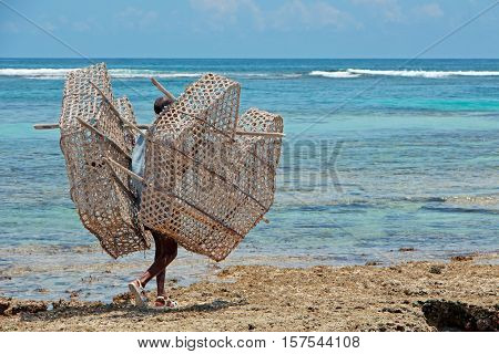 ZANZIBAR, TANZANIA - OCTOBER 25, 2014: Unidentified man with traditional fish trap of palm leaves and wood on the corral rocks of Zanzibar island