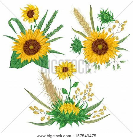 Sunflower, barley, wheat, rye, rice and oat. Collection decorative floral design elements. Isolated elements. Bouquets with cereals and flowers. Vintage vector illustration in watercolor style.