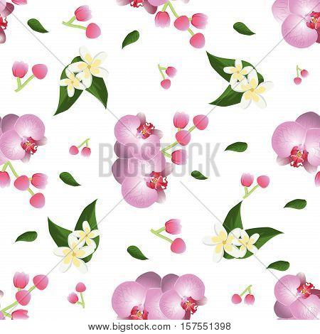 Orchid seamless pattern vector. Collection of orchid flower isolated on white. Orchid flower spring nature petal. Vector tropical plants orchids blossom green leafs and pink decoration branch.