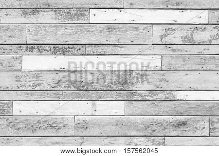 white and grey  wood texture for background