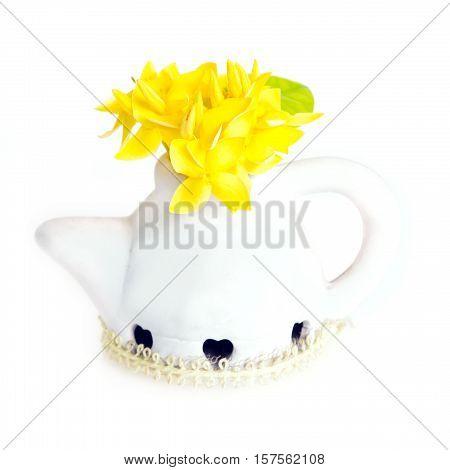 Ixora Flower In White Flower Pot Isolated On White Background