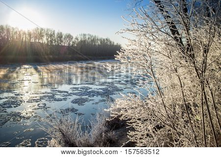 covered by rime plants on the banks of the freezing and foggy river