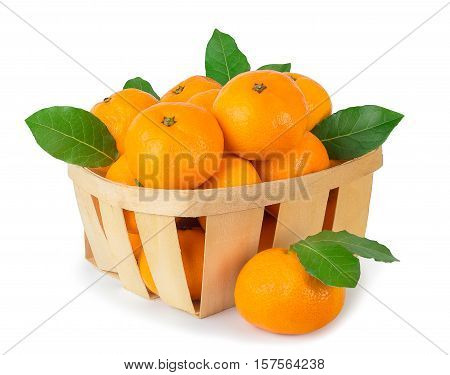 Tangerines with leaves in a basket and one tangerine near isolated on white background. Mandarins in a basket isolate. A wicker basket full of fresh orange fruits isolated on white background. Orange citrus fruits